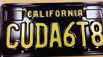 CUDA6T8